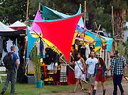 Summer Solstice Park 140620