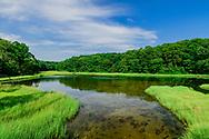 Pond, Dering Harbor, Shelter Island, NY