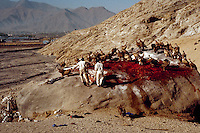 """April 1985, outside Lhasa, Tibet Autonomous Region, China --- Vultures assist in the Tibetan custom of """"sky burial"""" in which the deceased offer their bodies, dismembered by Tibetan  to earn merit through consumption by living beings. --- Image by © Owen Franken/CORBIS"""