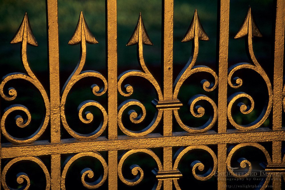Sunrise light on black iron gate Domaine Carneros, Carneros Region Napa County, California