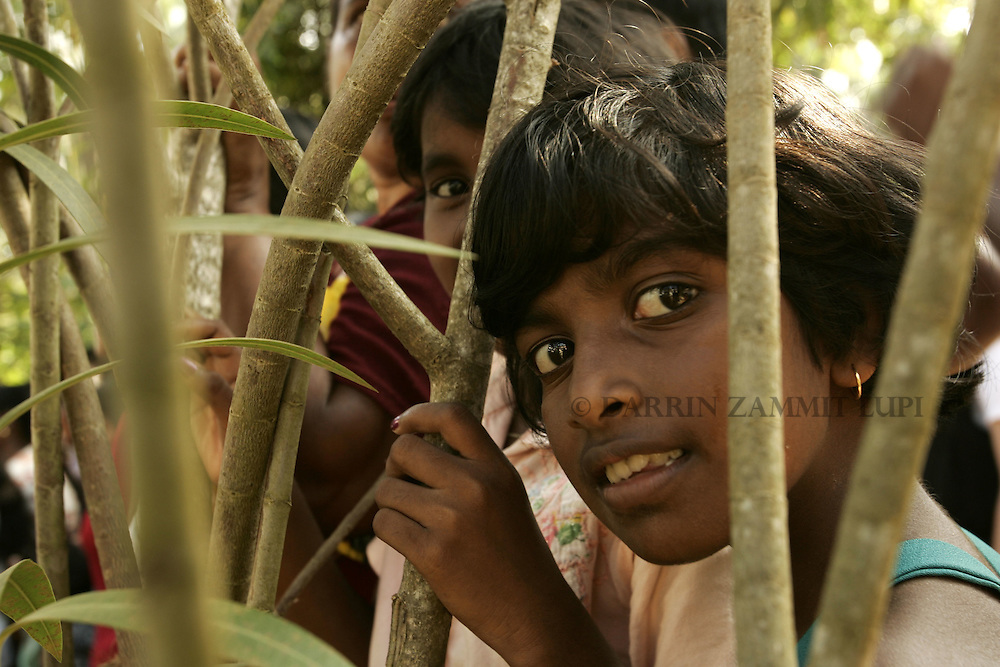 Children at the displaced persons camp at the Weheragalla Temple in Mirissa on the south coast of Sri Lanka on January 15, 2005..Photo by Darrin Zammit Lupi