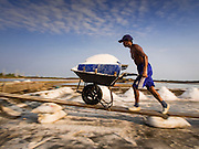 09 MARCH 2015 - NA KHOK, SAMUT SAKHON, THAILAND: A Burmese migrant worker on a salt farm near Samut Sakhon, Thailand, pushes a wheelbarrow of salt to the warehouse during the salt harvest. The coastal provinces of Samut Sakhon and Samut Songkhram, about 60 miles from Bangkok, are the center of Thailand's sea salt industry. Salt farmers harvest salt from the waters of the Gulf of Siam by flooding fields and then letting them dry through evaporation, leaving a crust of salt behind. Salt is harvested through dry season, usually February to April. The 2014 salt harvest went well into May because the dry season lasted longer than normal. Last year's harvest resulted in a surplus of salt, driving prices down. Some warehouses are still storing salt from last year. It's been very dry so far this year and the 2015 harvest is running ahead of last year's bumper crop. One salt farmer said prices are down about 15 percent from last year.    PHOTO BY JACK KURTZ