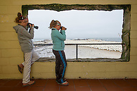 Children watching the Cape Gannet colony from the viewing hide, Lamberts Bay, Western Cape, South Africa
