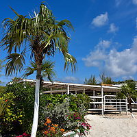 Horse Stable at Pegasus Ranch on Half Moon Cay, Bahamas <br /> If you ever dreamed of horseback riding on a beach then you can fulfill your fantasy at Half Moon Cay.  Just walk along the nature trail, or take a cart, to the Pegasus Ranch.  You&rsquo;ll find a stable that is home to about twenty horses. The staff will be happy to lead you on a riding excursion that fits your experience level.  Or if you prefer, just enjoy the fragrance of the flowers while watching these magnificent animals.