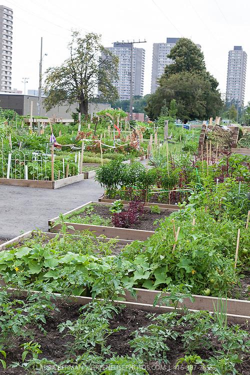 GreenFuse Photos: Garden, Farm & Food