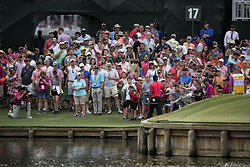 May 13, 2018 - Ponte Vedra Beach, FL, USA - The Players Championship 2018 at TPC Sawgrass..Tiger Woods gives a ball to young fans as he leaves # 17 green. (Credit Image: © Bill Frakes via ZUMA Wire)