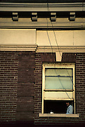 Man, Apartment, Window, Apartment Window, Lonely, Alone, watching, Seattle, Washington