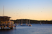 Watsons Bay Sunset, Sydney, Australia.