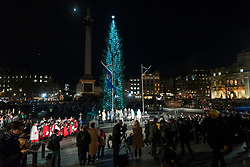 © Licensed to London News Pictures. 05/12/2019. LONDON, UK.  The annual lighting of the Christmas Tree takes place in Trafalgar Square.  The tree, a Norwegian spruce, is donated by the City of Oslo to the people of London each year as a token of gratitude for Britain's support during the Second World War.  This year, the tree has been criticised for having branches which too sparse.  Photo credit: Stephen Chung/LNP