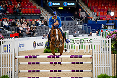 7 years old horses - Goteborg 2019