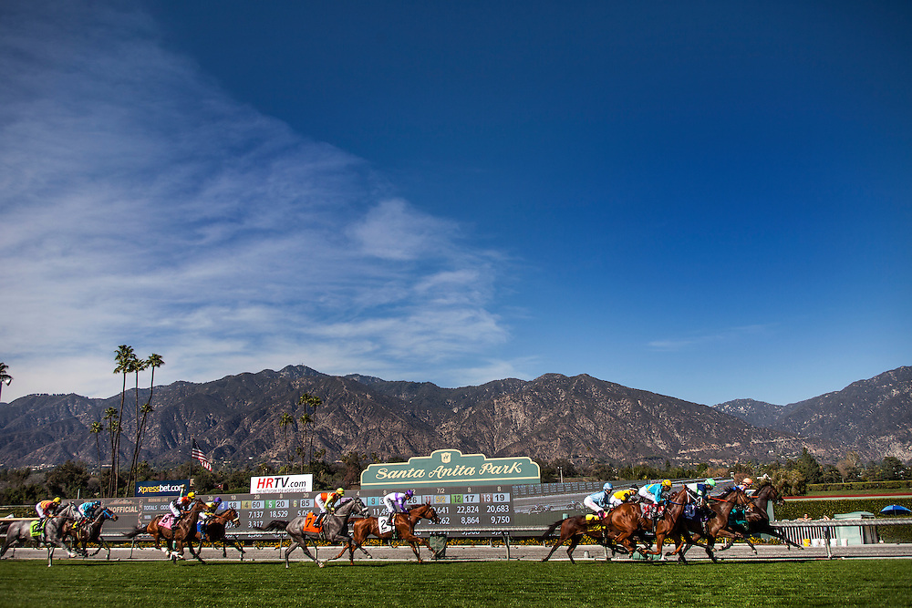 Horses race during the China Doll Stakes at Santa Anita Park on March 8, 2014 in Arcadia, California. (Photo by Evers/Eclipse Sportswire)