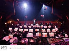 Vector Wellington Orchestra