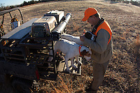 QUAIL HUNTER UNLOADING A DOG FROM THE BACK OF A SPORT UTILITY WAGON.