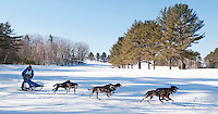 1Doug Butler of Bristol, VT leads his dogs through the trails at Laconia Country Club during the Lyn Newell Memorial Six Dog Classic Friday morning for the 82nd annual World Championship Sled Dog Derby.  (Karen Bobotas/for the Laconia Daily Sun)