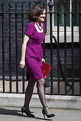 Northern Ireland Secretary Theresa Villiers leaves Prime Minister David Cameron's final cabinet meeting following Theresa May's anticipated takeover as Leader of the Conservative Party and Prime Minister on Wednesday 13th July 2016.
