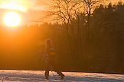 Skilangläufer, Sonnenuntergang, Schnee, Winter, Harz, Niedersachsen, Deutschland | cross country skiing, sunset, snow, winter, Harz, Lower Saxony, Germany