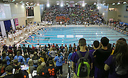Swimmers take off in the 100 yard breaststroke event at the Girls' High School State Swimming & Diving Championships at the Marshalltown YMCA/YWCA in Marshalltown on Saturday, November 9, 2013.