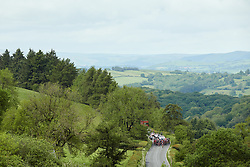The peloton approach at Stage 5 of 2019 OVO Women's Tour, a 140 km road race from Llandrindod Wells to Builth Wells, United Kingdom on June 14, 2019. Photo by Sean Robinson/velofocus.com