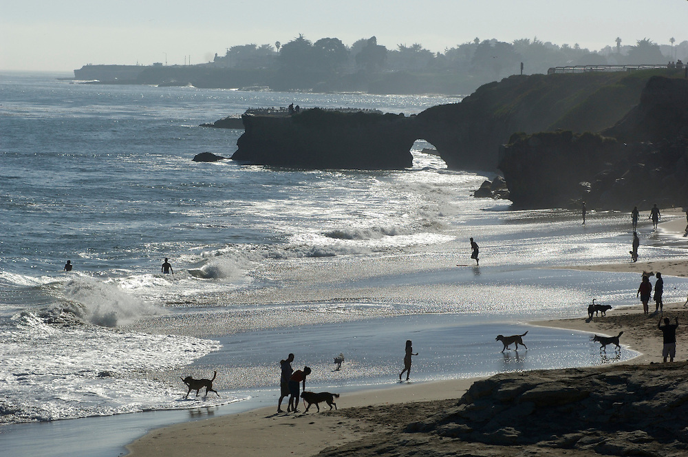 Dog Beach, Lighthouse Field State Park, Santa Cruz, California, United States of America