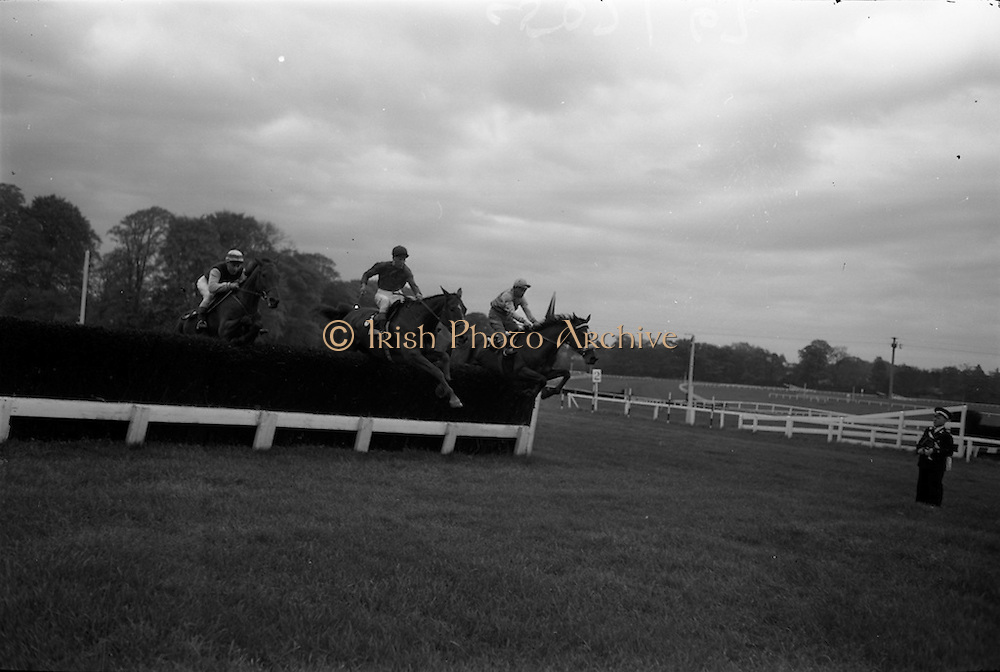 """10/05/1965<br /> 05/10/1965<br /> 10 May 1965<br /> Mr. H. Sumner's """"Greek Vulgan"""", left, winner of the Woodbine Steeplechase, clears the last hurdle with """"Sandy Beach"""", centre, who finished second, and """"Agin Court"""" at the Leopardstown Races on May 10, 1965."""