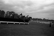 "10/05/1965<br /> 05/10/1965<br /> 10 May 1965<br /> Mr. H. Sumner's ""Greek Vulgan"", left, winner of the Woodbine Steeplechase, clears the last hurdle with ""Sandy Beach"", centre, who finished second, and ""Agin Court"" at the Leopardstown Races on May 10, 1965."