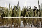 Jardin Ethnobotanico