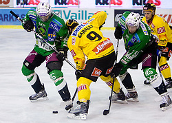 Yves Sarault between Bostjan Golicic  and Egon Muric of Olimpija during 52nd Round of EBEL league ice-hockey match between HDD Tilia Olimpija, Ljubljana and EV Vienna Capitals, on February 7, 2010 in Arena Tivoli, Ljubljana, Slovenia. Vienna defeated Olimpija 8-2. (Photo by Vid Ponikvar / Sportida)