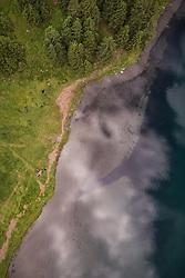 THEMENBILD - das grüne Ufer und der Hintersee, aufgenommen am 23. Juni 2019 in Mittersill, Österreich // the green shore and the Hintersee, Mittersill, Austria on 2019/06/23. EXPA Pictures © 2019, PhotoCredit: EXPA/ JFK
