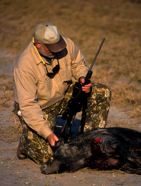 Stock photo of a man kneeling with a wild boar that he shot