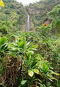 Waikomo Falls, Kipahulu, Hana Coast, Maui, Hawaii