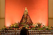 Nederland, Den Bosch, 20171209<br /> Lichtshow in de St. Jan. Kathedraal St. Jan in Den Bosch.De Sint-Janskathedraal (voluit: de Kathedrale Basiliek van Sint-Jan Evangelist) in de binnenstad van 's-Hertogenbosch wordt veelal beschouwd als het hoogtepunt van de Brabantse gotiek. De kathedraal imponeert door zijn omvang en enorme rijkdom aan beeldhouwwerk. Uniek in Nederland zijn de dubbele luchtbogen en uniek in de wereld zijn de 96 luchtboogfiguren.De kerk in volle pracht op de Parade<br /> Sint-Janskathedraal<br /> <br /> Netherlands, Den Bosch<br /> The St. John's Cathedral (in full: the Cathedral Basilica of St. John the Evangelist) in the city of 's-Hertogenbosch is often regarded as the pinnacle of Brabant Gothic. The cathedral impresses by its size and wealth of sculpture. Unique in the Netherlands are the double flying buttresses and unique in the world, the 96 flying buttress figures.<br /> St. John's Cathedral