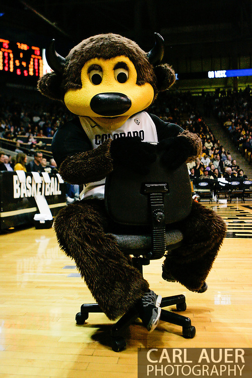 January 2nd, 2014:  The Colorado mascot, Chip the Buffalo spins on the tv cameraman's chair during a break in the first half of action in the NCAA Basketball game between the Oregon State Beavers and the University of Colorado Buffaloes at the Coors Events Center in Boulder, Colorado