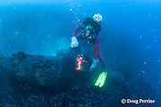 diver Bud Turpin shapes erupting pillow lava at ocean entry of Kilauea Volcano, Hawaii Island ( the Big Island ) <br /> Hawaii, U.S.A. ( Central Pacific Ocean ) MR 381