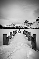 Bow Lake in winter., Alberta, Canada, Isobel Springett