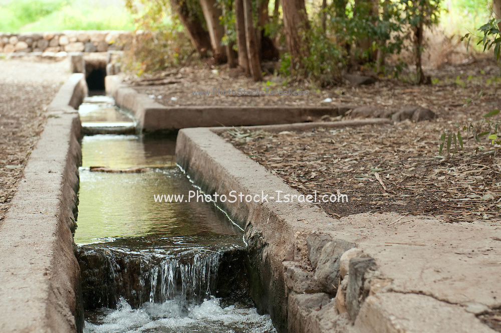 Primitive irrigation ducts carry the water from the spring to the fields Photographed in Israel