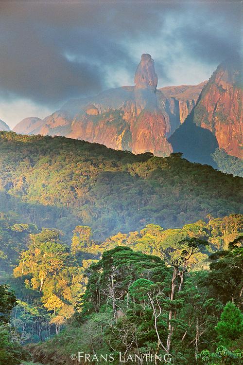 Rainforest and granite mountains, Serra dos Orgaos National Park, Brazil