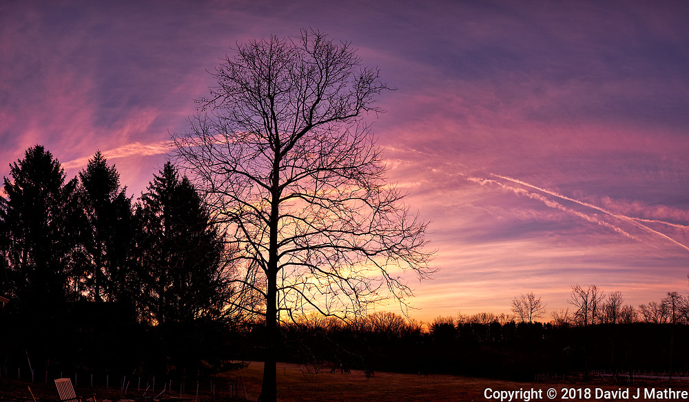 Dawn Morning Contrails and Clouds. Winter Backyard Nature in New Jersey. Composite of 8 images taken with a Fuji X-T1 camera and 16 mm f/1.4 lens (ISO 200, 16 mm, f/5.6, 1/30 sec). Raw images processed with Capture One Pro and the composite generated with AutoPano Giga Pro.