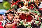 "05 JULY 2014 - BANGKOK, THAILAND: A man holds the head of a Chinese style dragon dancer on a side street in Bangkok during a parade for vassa. Vassa, called ""phansa"" in Thai, marks the beginning of the three months long Buddhist rains retreat when monks and novices stay in the temple for periods of intense meditation. Vassa officially starts July 11 but temples across Bangkok are holding events to mark the holiday all week.    PHOTO BY JACK KURTZ"