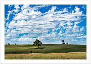 Insanely intricate summer clouds along the Ashford Road near Bukkulla [Inverell district, NSW]. <br />