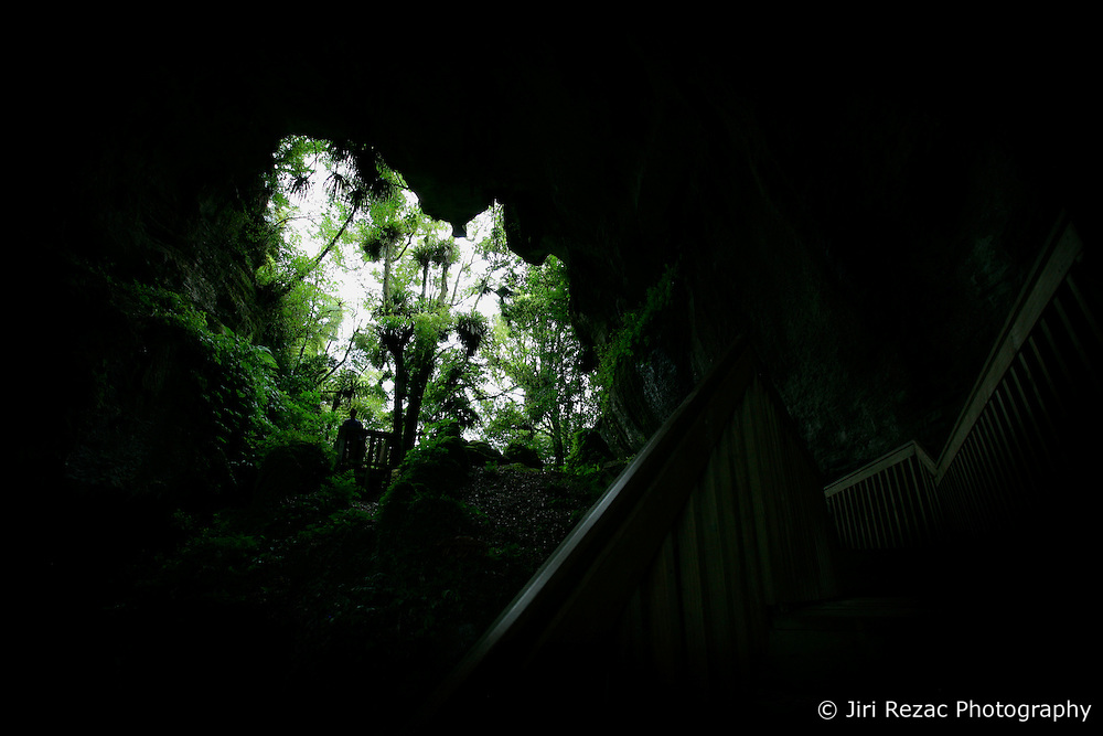 NEW ZEALAND WAITOMO 16DEC07 - Mangapohue Natural Bridge, formed by the remains of a collapsed cave roof near Waitomo...jre/Photo by Jiri Rezac..© Jiri Rezac 2007..Contact: +44 (0) 7050 110 417.Mobile:  +44 (0) 7801 337 683.Office:  +44 (0) 20 8968 9635..Email:   jiri@jirirezac.com.Web:    www.jirirezac.com..© All images Jiri Rezac 2007 - All rights reserved.