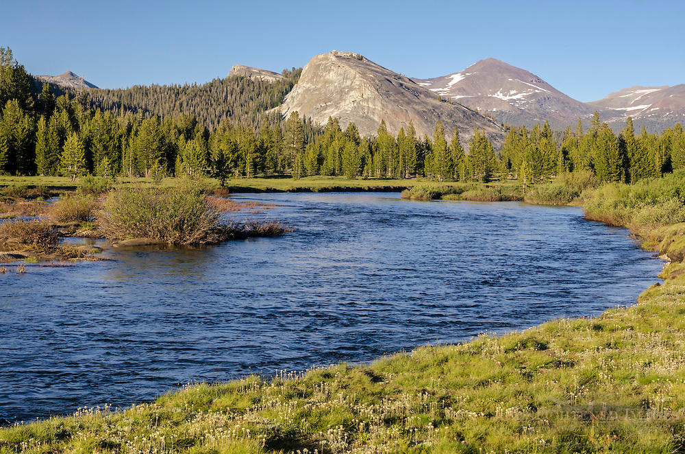 The Tuoliumne River flowing through Tuolumne Meadows, Yosemite National Park, California