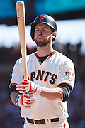 San Francisco Giants first baseman Brandon Belt (9) at bat against the Los Angeles Dodgers at AT&T Park in San Francisco, Calif., on October 1, 2016. (Stan Olszewski/Special to S.F. Examiner)