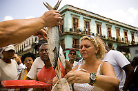 A seafood vender sells fish at the Sunday market located across the Capitolio Nacional in Havana, Cuba, on Sunday, April 27, 2008. Hundreds of Cubans and tourists flock to the market to shop for produce, fruits, seafood and meats or to mingle in with the hustle and bustle of the jammed packed market.