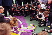 The 133rd Annual Westminster Dog Show(Best In Show) held at Madison Square Garden on Feb 10, 2009
