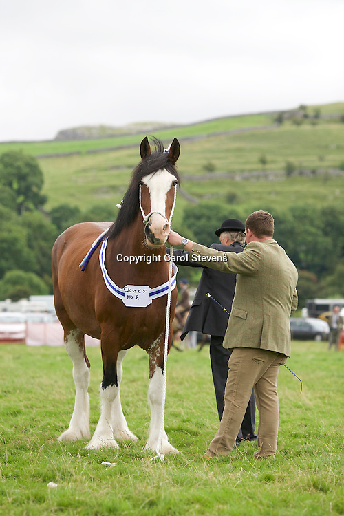 Craig Wilkins showing Stan &amp; Sue Brown's Bordley House Mamma Mia<br /> 2nd Barren Mare Class<br /> Winner SHS Silver Spoon (1st one for the mare)<br /> with Judge, Bill Livesey