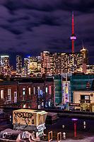 Toronto Skyline & Kensington Market Rooftops