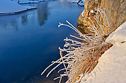 Grasses and rock by a river in winter<br />