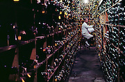 In the wine cellar at UC Davis, California. The cellar contains 200,000 samples. Viticulture/Oenology. MODEL RELEASED. USA.