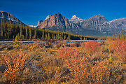 Autumn in The Canadian Rocky Mountains. Icefields Parkway.<br />