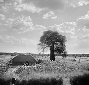 Landscape, Ruwenzori (Rwenzori) Mountain Range, Ruanda-Urundi (now Rwanda), Africa, 1937